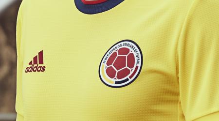 Dos jugadores de la Selección Colombia desconvocados